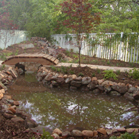 Can I have a pond in my backyard?