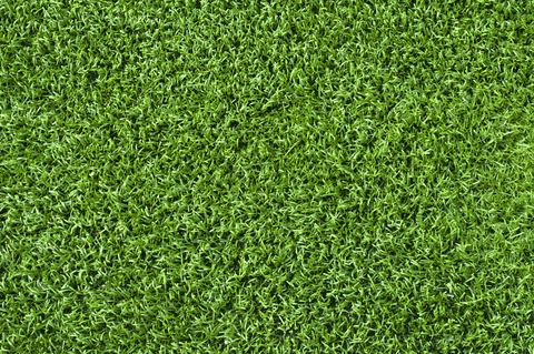 Artificial Turf for my backyard!